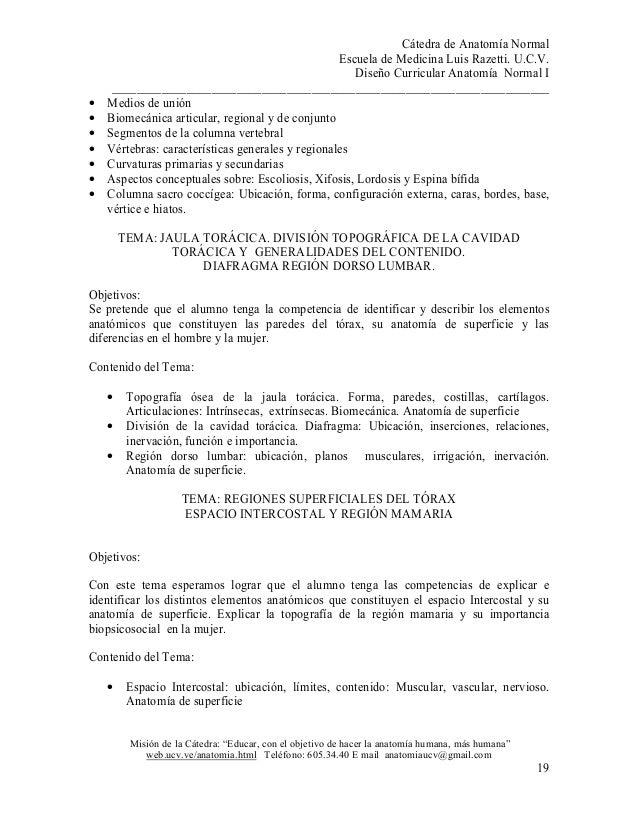 Fantástico Anatomía En La Escuela De Medicina Elaboración - Anatomía ...