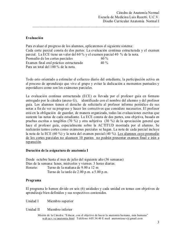 Contemporáneo Anatomía 1 Examen Final Galería - Anatomía de Las ...