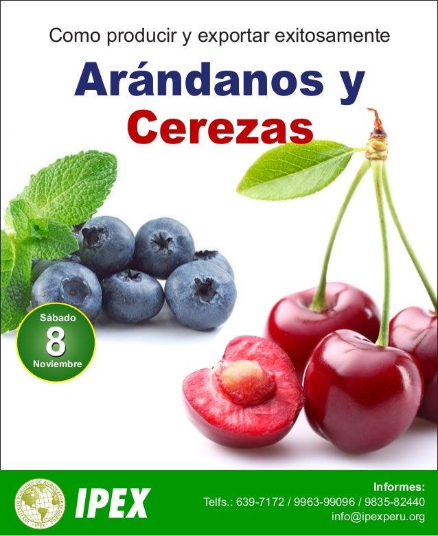 Como producir y exportar exitosamente  Informes:  Arándanos y  Cerezas  Telfs.: 639-7172 / 9963-99096 / 9835-82440  info@i...