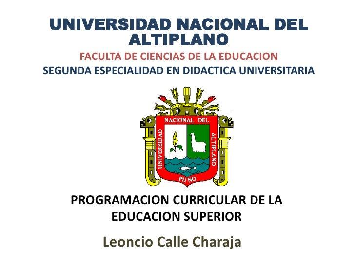 UNIVERSIDAD NACIONAL DEL ALTIPLANO<br />FACULTA DE CIENCIAS DE LA EDUCACION<br />SEGUNDA ESPECIALIDAD EN DIDACTICA UNIVERS...
