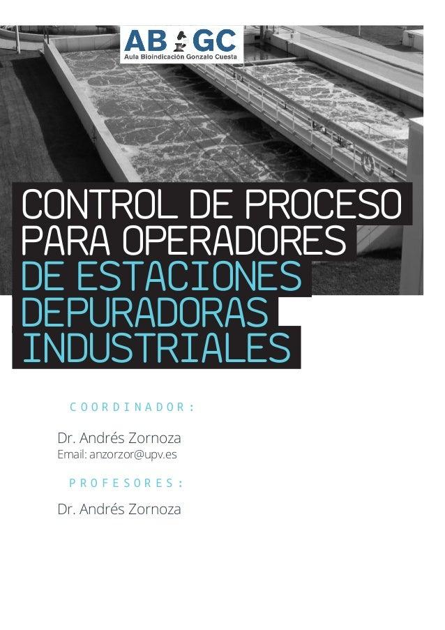 CONTROL DE PROCESO PARA OPERADORES DE ESTACIONES DEPURADORAS INDUSTRIALES C O O R D I N A D O R : Dr. Andrés Zornoza Email...