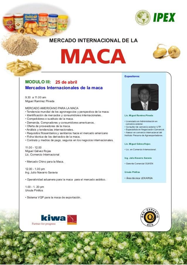 MODULO III: Mercados Internacionales de la maca 25 de abril Expositores: MACA MERCADO INTERNACIONAL DE LA Lic. Miguel Ramí...