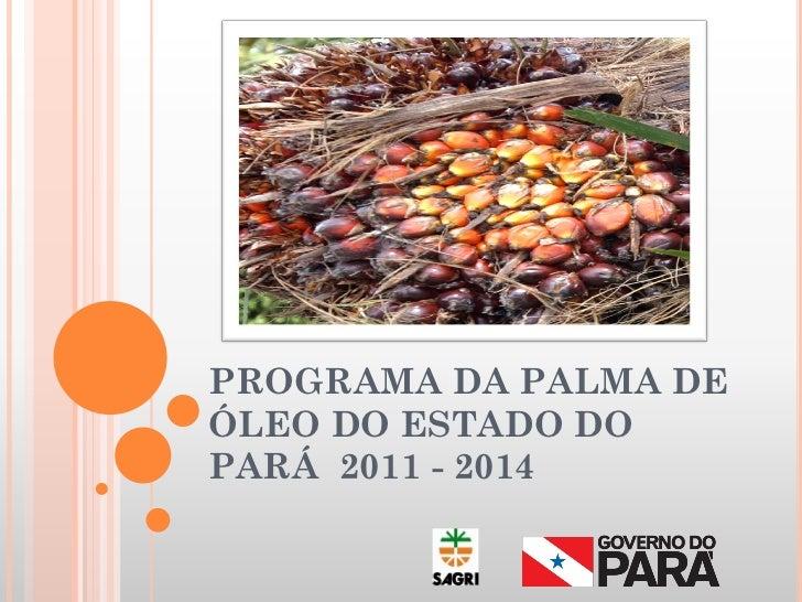 PROGRAMA DA PALMA DEÓLEO DO ESTADO DOPARÁ 2011 - 2014