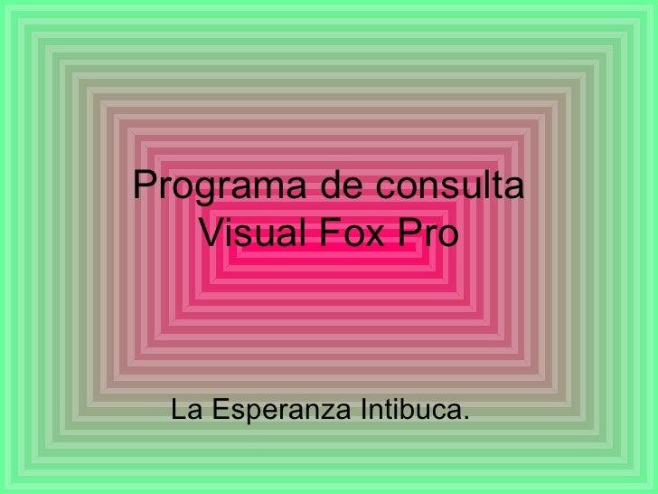 Programa de consulta Visual Fox Pro La Esperanza Intibuca.