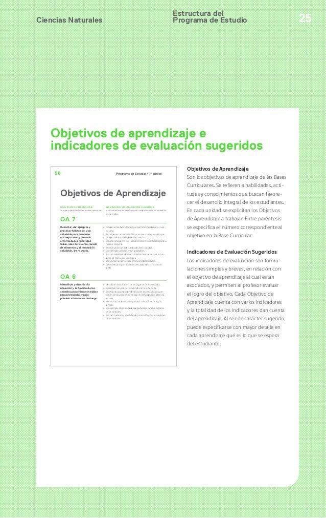 Programa de estudio 4 basico ciencias naturales for Programa de cuarto