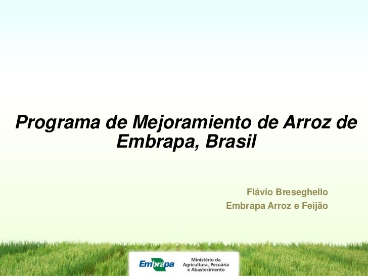 Programa de Mejoramiento de Arroz de          Embrapa, Brasil                         Flávio Breseghello                  ...