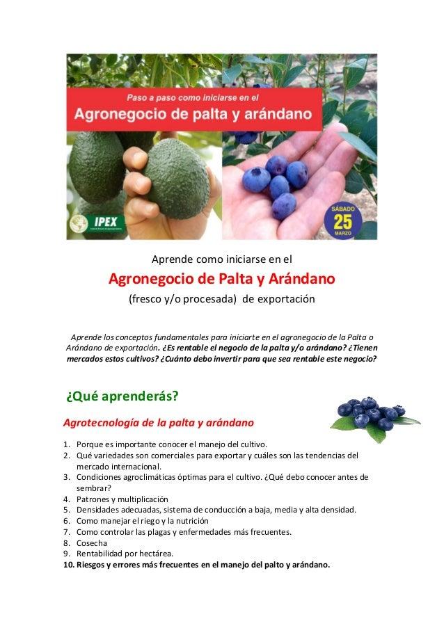 Aprende como iniciarse en el Agronegocio de Palta y Arándano (fresco y/o procesada) de exportación Aprende los conceptos f...