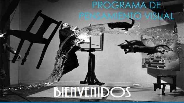 PROGRAMA DE PENSAMIENTO VISUAL