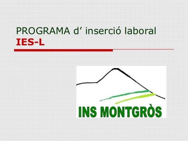 PROGRAMA d' inserció laboral IES-L