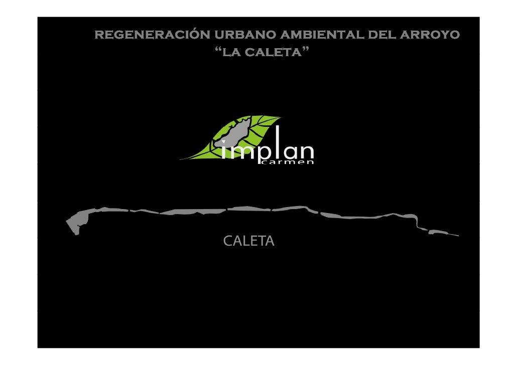 """regeneració regeneración urbano ambiental del arroyo              """"la caleta""""                  caleta"""""""