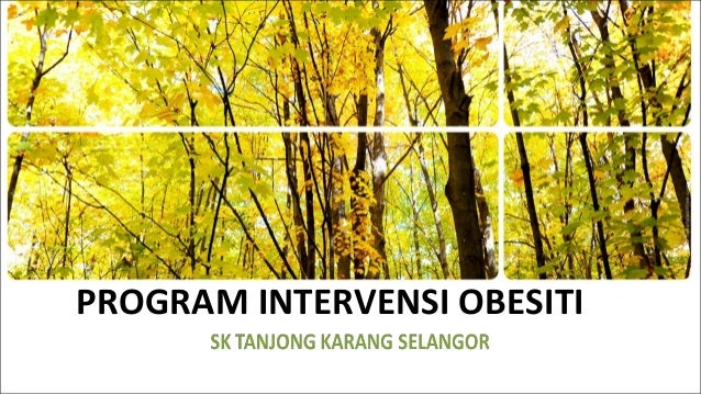PROGRAM INTERVENSI OBESITI