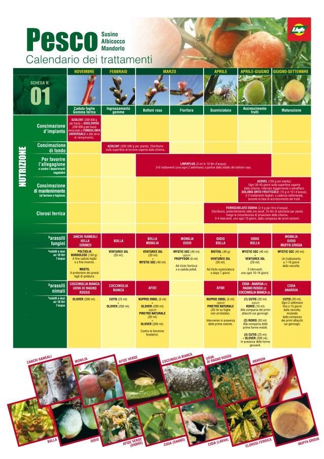 Programma Difesa Piante da Frutto - Vivai Piante Gabbianelli