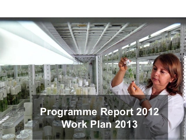 Programme Report 2012    Work Plan 2013                  Tim Krupnick, CIMMYT