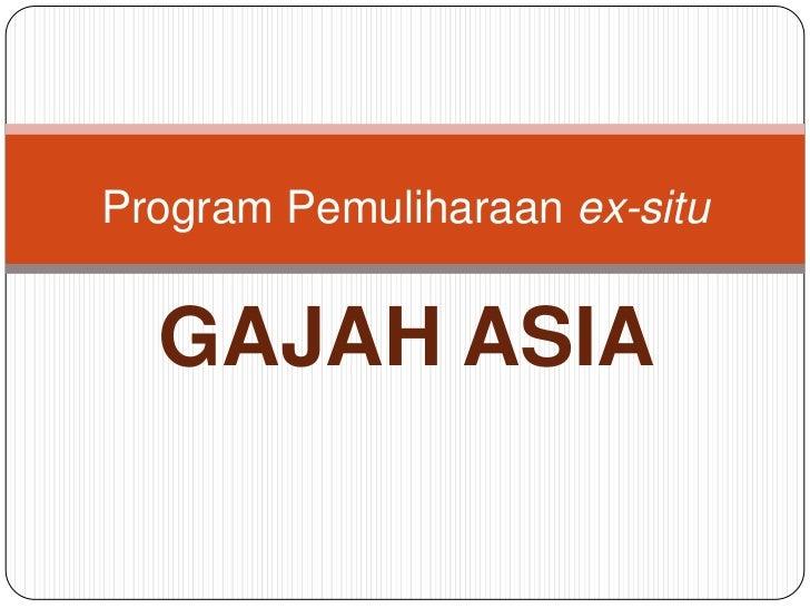 Program Pemuliharaan ex-situ  GAJAH ASIA