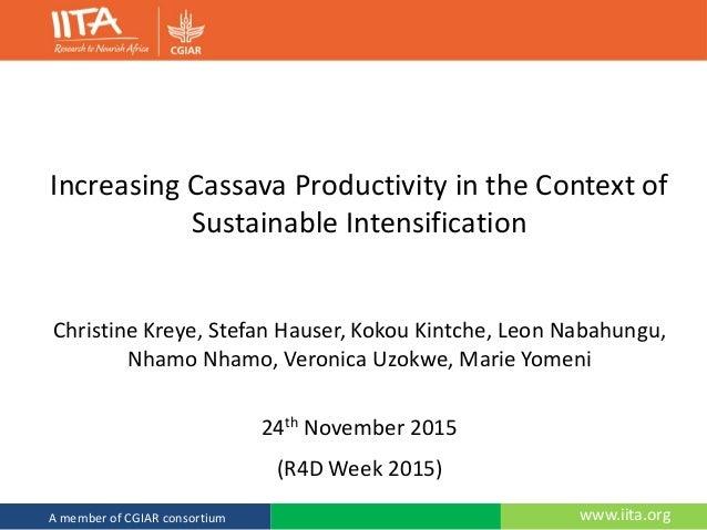 www.iita.orgA member of CGIAR consortium Increasing Cassava Productivity in the Context of Sustainable Intensification Chr...
