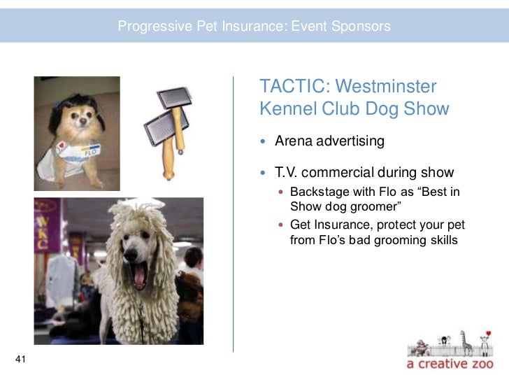 Dog Grooming Insurance Kennel Club