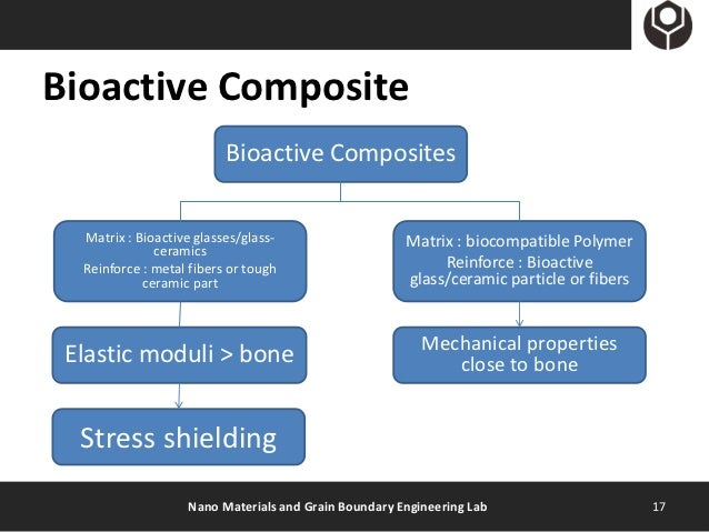 Introduction To Bioactive Glass