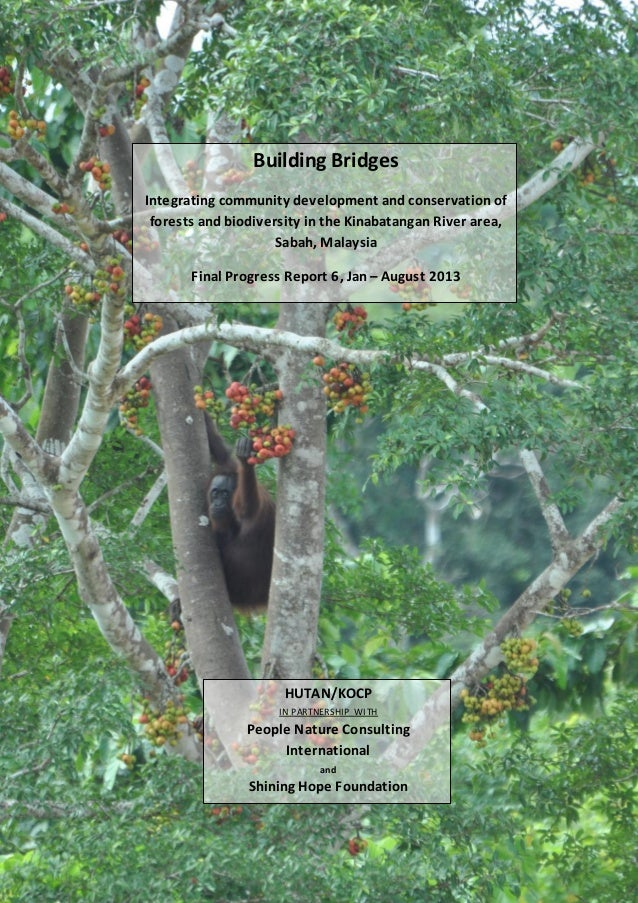 Building Bridges Integrating community development and conservation of forests and biodiversity in the Kinabatangan River ...