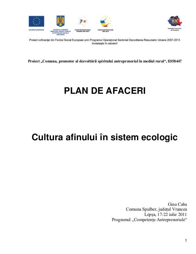 """1 Proiect """"Comuna, promotor al dezvoltării spiritului antreprenorial în mediul rural"""", ID58447 PLAN DE AFACERI Cultura afi..."""