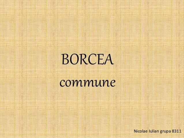 BORCEA commune Nicolae Iulian grupa 8311