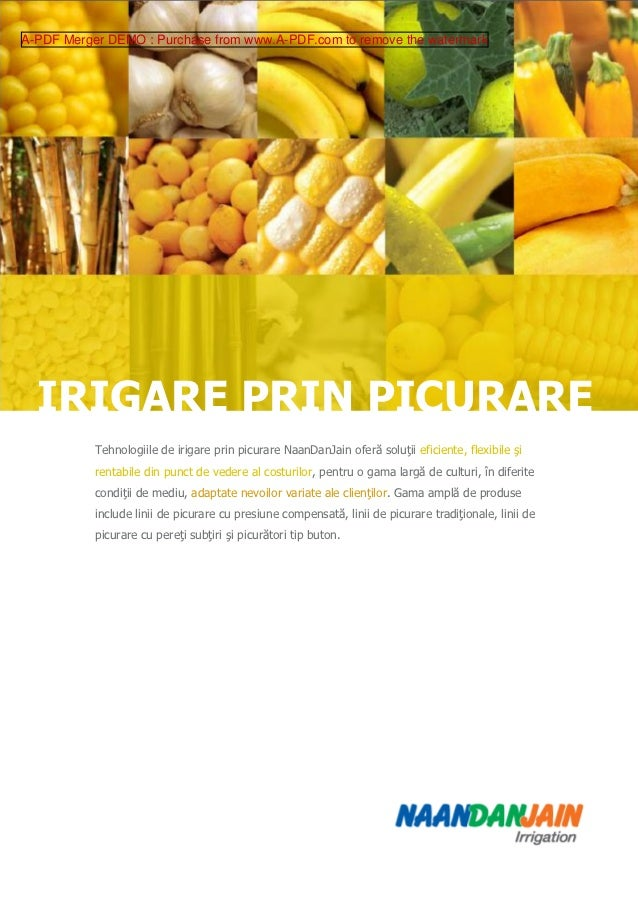 A-PDF Merger DEMO : Purchase from www.A-PDF.com to remove the watermark  IRIGARE PRIN PICURARE           Tehnologiile de i...