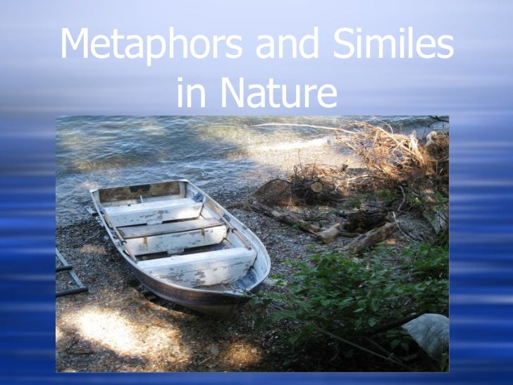 Metaphors and Similes in Nature