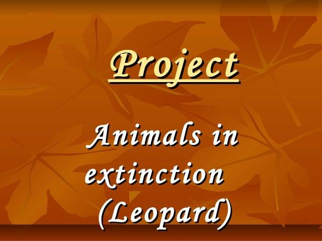 ProjectProject Animals inAnimals in extinctionextinction (Leopard)(Leopard)