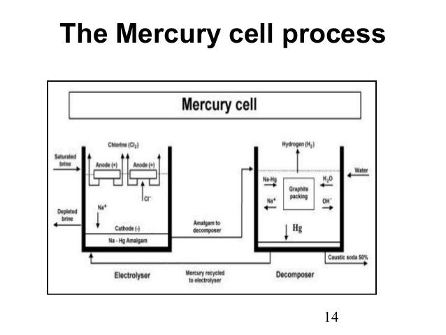 The Mercury cell process  14