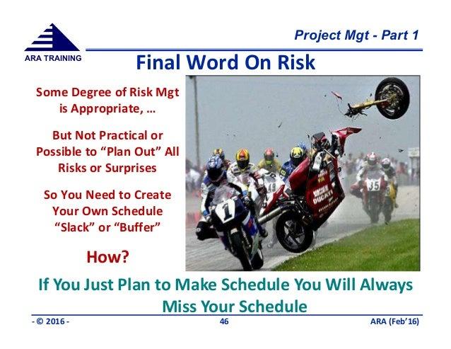 Is3110 Project: Risk Management Plan Essay
