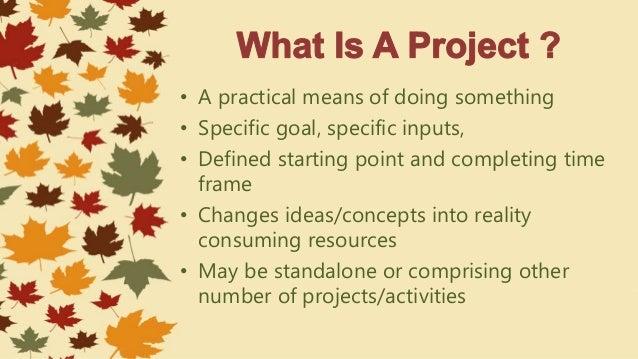 Project proposal Slide 2