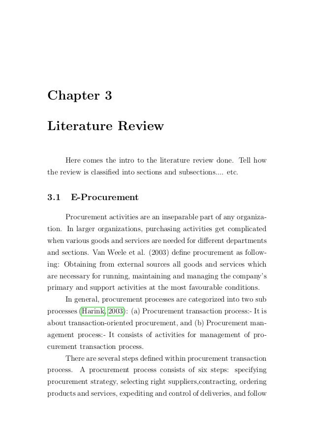 term paper literature review