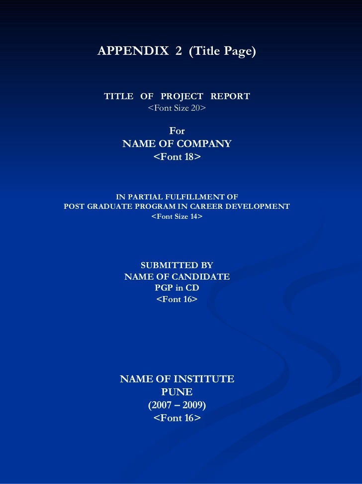 report format of project