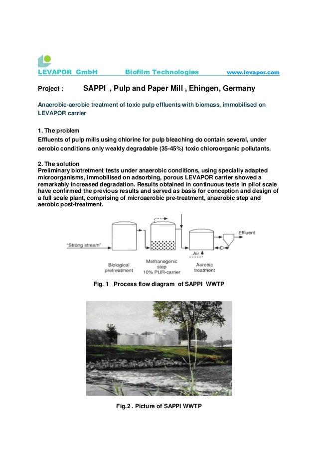LEVAPOR GmbH Biofilm Technologies www.levapor.comProject : SAPPI , Pulp and Paper Mill , Ehingen, GermanyAnaerobic-aerobic...