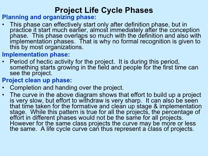 Project phases essay