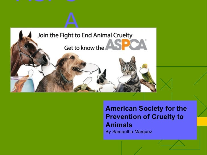 ASPCA American Society for the Prevention of Cruelty to Animals By Samantha Marquez