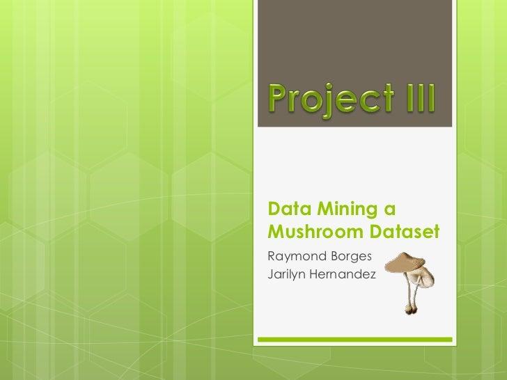 Data Mining aMushroom DatasetRaymond BorgesJarilyn Hernandez