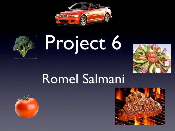Project 6Romel Salmani