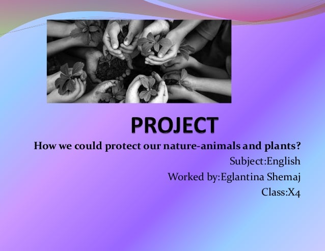 How we could protect our nature-animals and plants? Subject:English Worked by:Eglantina Shemaj Class:X4