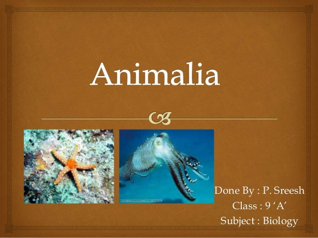 Image of: Definition Slideshare Diversity In Living Organisms animalia
