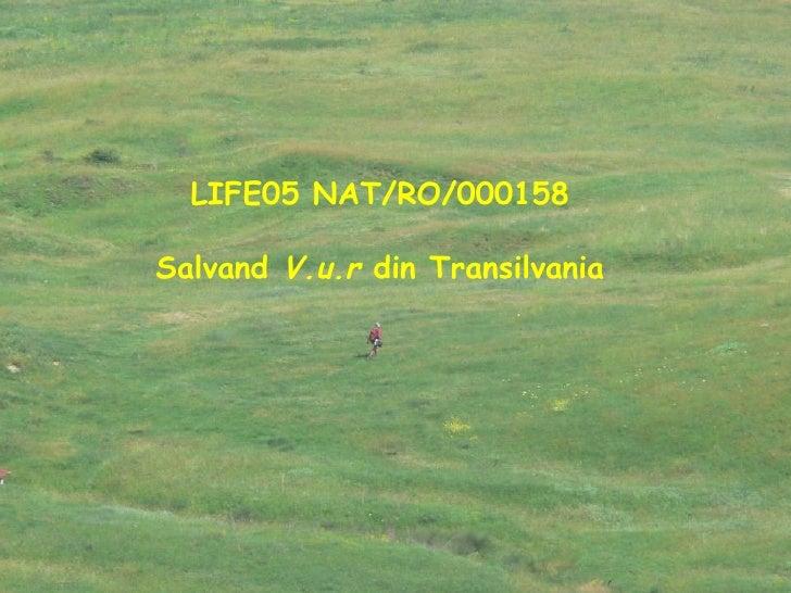 LIFE05 NAT/RO/000158 Salvand  V.u.r  din Transilvania