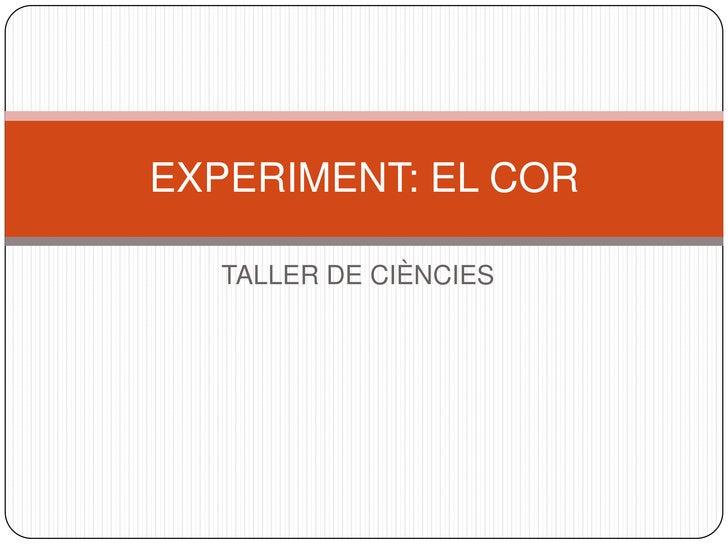 EXPERIMENT: EL COR   TALLER DE CIÈNCIES