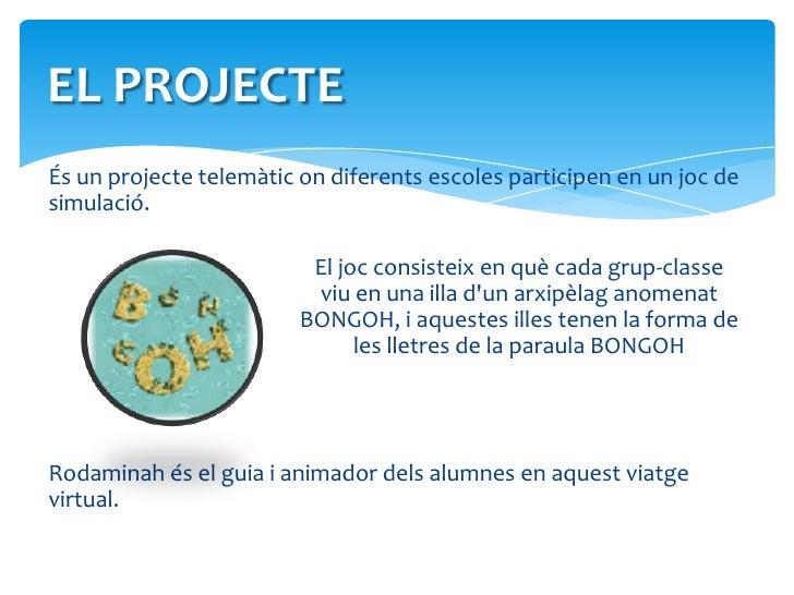 EL PROJECTE<br />És un projecte telemàtic on diferents escoles participen en un joc de simulació. <br />El joc consiste...