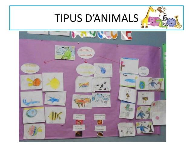 TIPUS D'ANIMALS