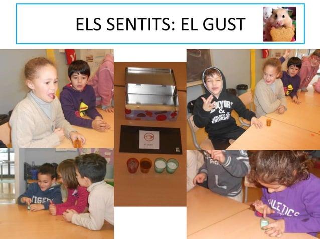 ELS SENTITS: EL GUST