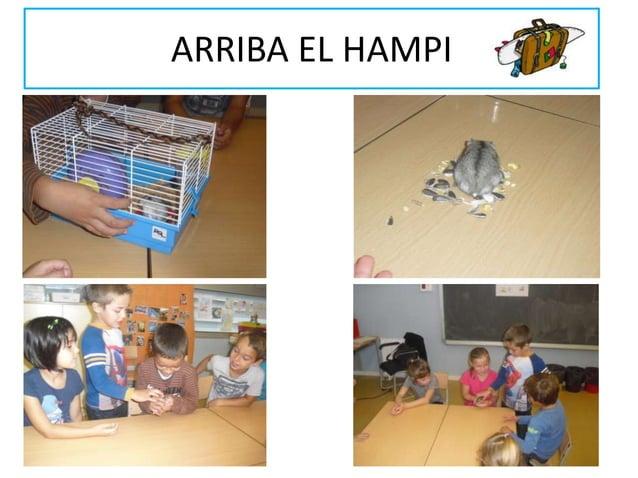 ARRIBA EL HAMPI