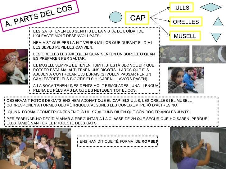 COS                                                                            ULLS             L      T S DE             ...