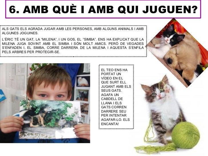 6. AMB QUÈ I AMB QUI JUGUEN?ALS GATS ELS AGRADA JUGAR AMB LES PERSONES, AMB ALGUNS ANIMALS I AMBALGUNES JOGUINES.L'ÈRIC TÉ...