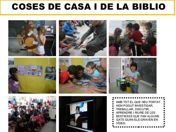 COSES DE CASA I DE LA BIBLIO                  AMB TOT EL QUE HEU PORTAT                  HEM POGUT INVESTIGAR,            ...