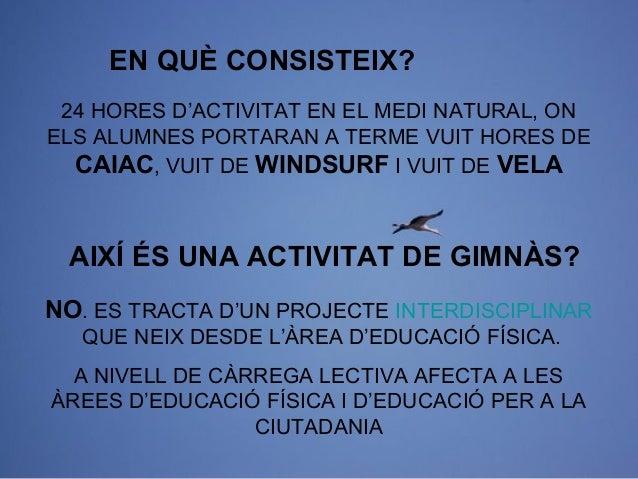 LOS PILARES DEL PROYECTO MAREMAR  Ayuntamiento  Soporte económico Contacto directo con las empresas y el IES  IES  Gestión...