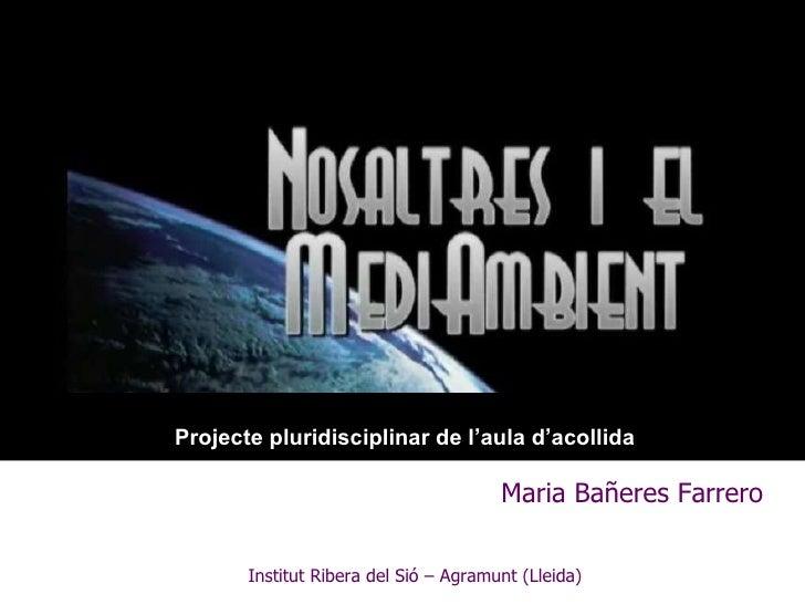 Maria Bañeres Farrero Institut Ribera del Sió – Agramunt (Lleida) Projecte pluridisciplinar de l'aula d'acollida